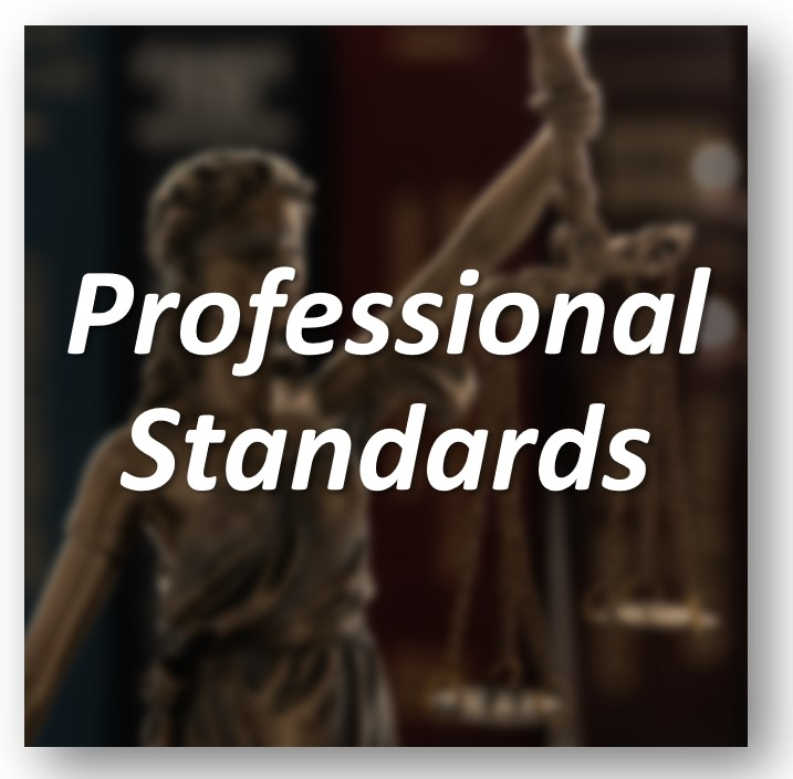 Professional Standards Tile from Screen Capture